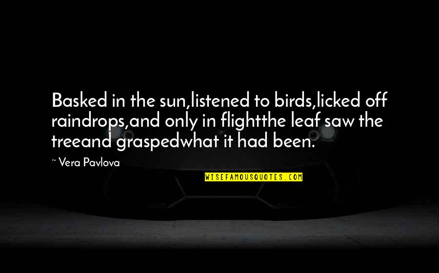 Vera Pavlova Quotes By Vera Pavlova: Basked in the sun,listened to birds,licked off raindrops,and
