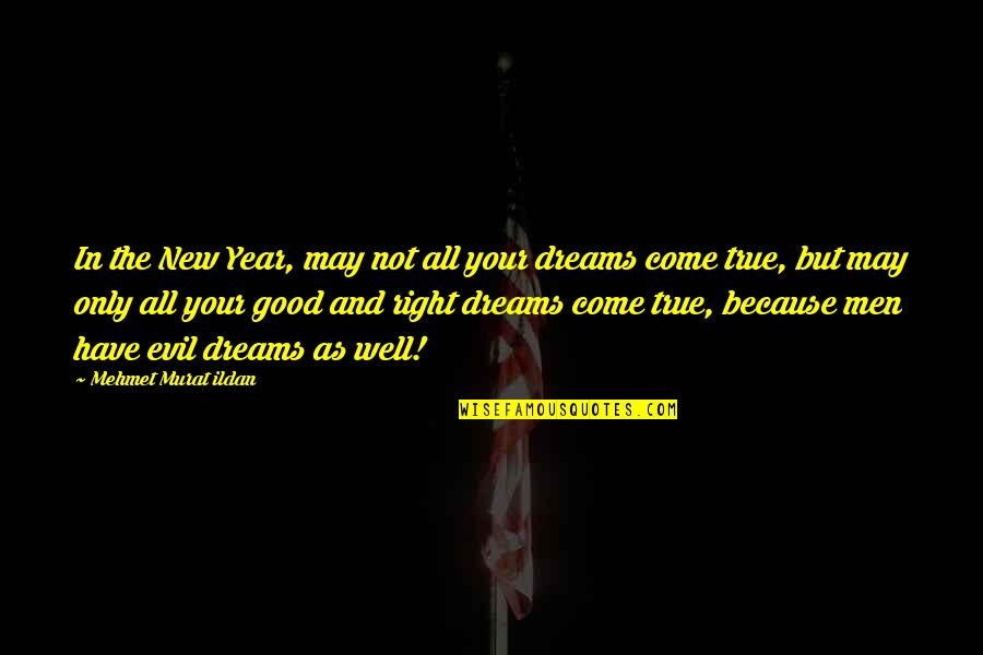 Very Good New Year Quotes By Mehmet Murat Ildan: In the New Year, may not all your