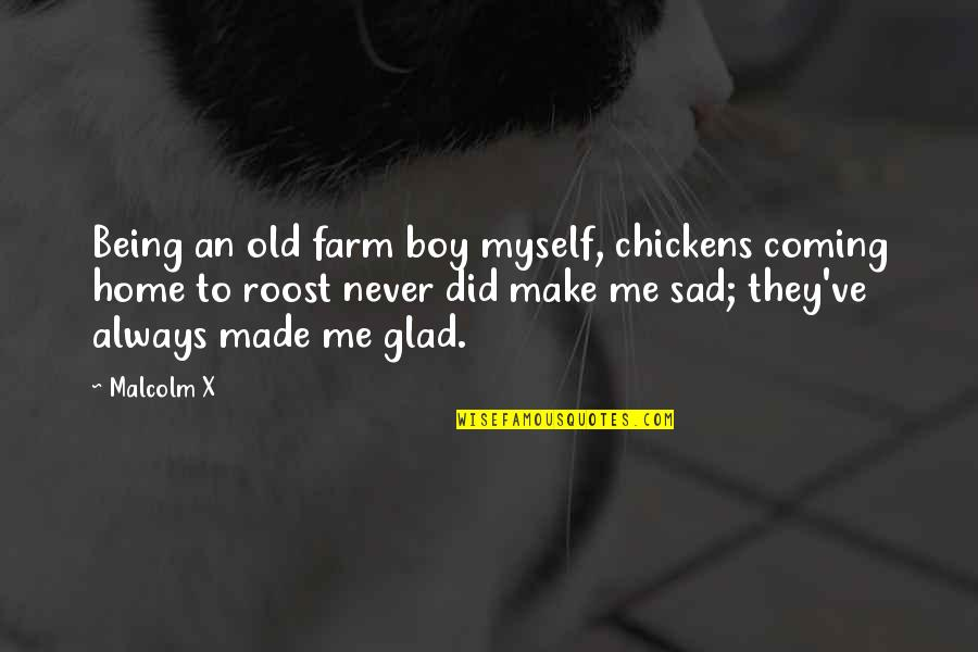 Very Sad Boy Quotes By Malcolm X: Being an old farm boy myself, chickens coming