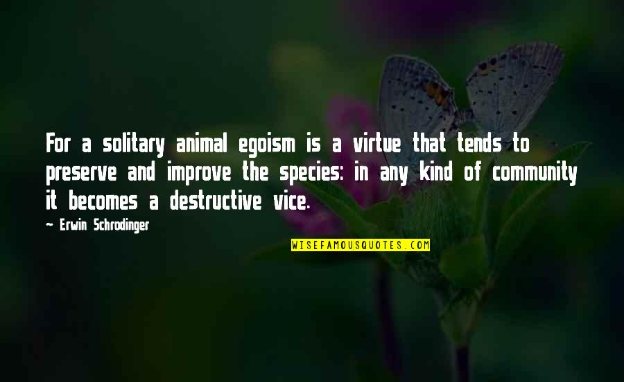 Vice And Virtue Quotes By Erwin Schrodinger: For a solitary animal egoism is a virtue