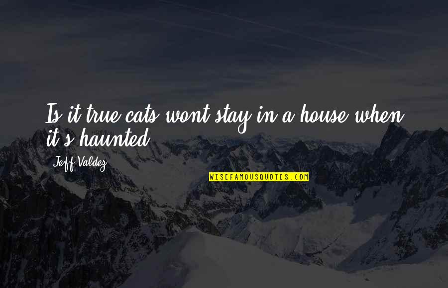 Vie Quotes By Jeff Valdez: Is it true cats wont stay in a