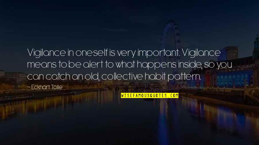 Vigilance Quotes By Eckhart Tolle: Vigilance in oneself is very important. Vigilance means