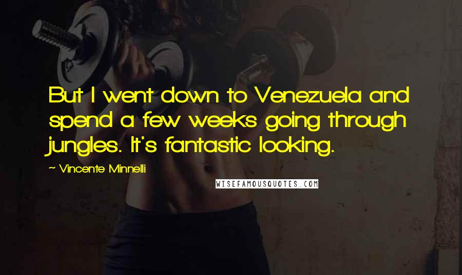 Vincente Minnelli quotes: But I went down to Venezuela and spend a few weeks going through jungles. It's fantastic looking.