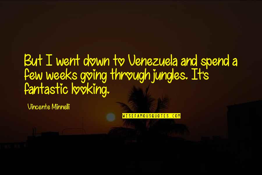 Vincente Minnelli Quotes By Vincente Minnelli: But I went down to Venezuela and spend