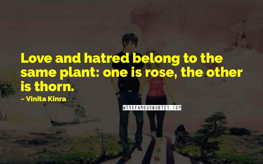 Vinita Kinra quotes: Love and hatred belong to the same plant: one is rose, the other is thorn.