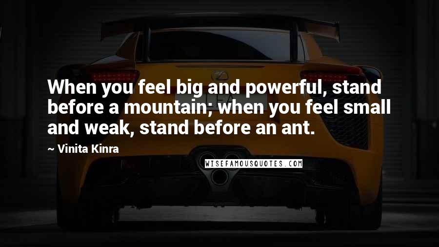 Vinita Kinra quotes: When you feel big and powerful, stand before a mountain; when you feel small and weak, stand before an ant.
