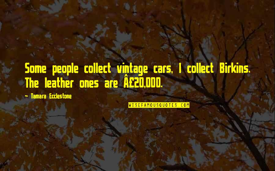 Vintage Cars Quotes By Tamara Ecclestone: Some people collect vintage cars, I collect Birkins.