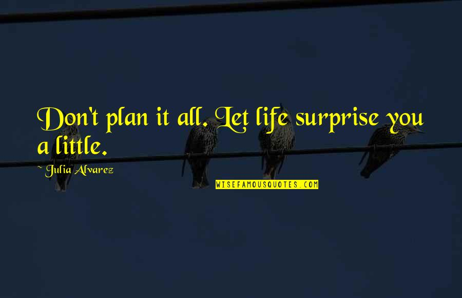 Violence In The Media Quotes By Julia Alvarez: Don't plan it all. Let life surprise you
