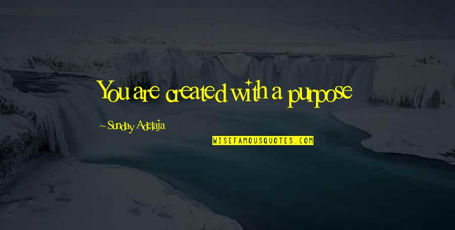 Viscarro Quotes By Sunday Adelaja: You are created with a purpose