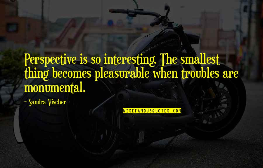 Vischer Quotes By Sandra Vischer: Perspective is so interesting. The smallest thing becomes