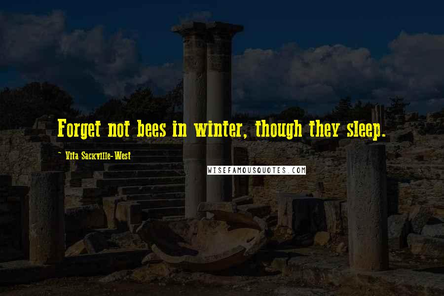 Vita Sackville-West quotes: Forget not bees in winter, though they sleep.