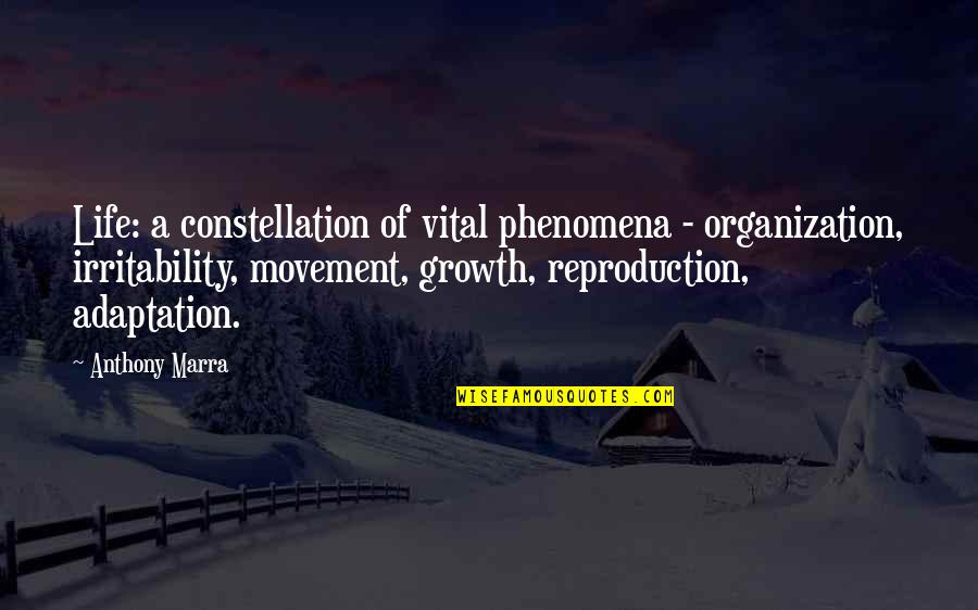 Vital Life Quotes By Anthony Marra: Life: a constellation of vital phenomena - organization,