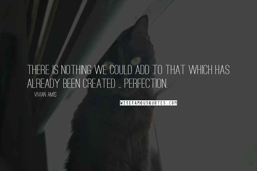 Vivian Amis quotes: There is nothing we could add to that which has already been created ... perfection.