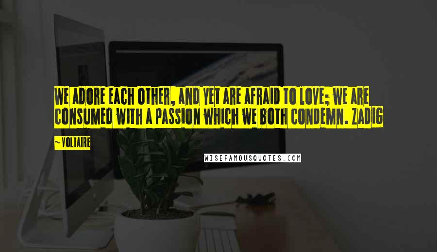 Voltaire quotes: We adore each other, and yet are afraid to love; we are consumed with a passion which we both condemn. Zadig
