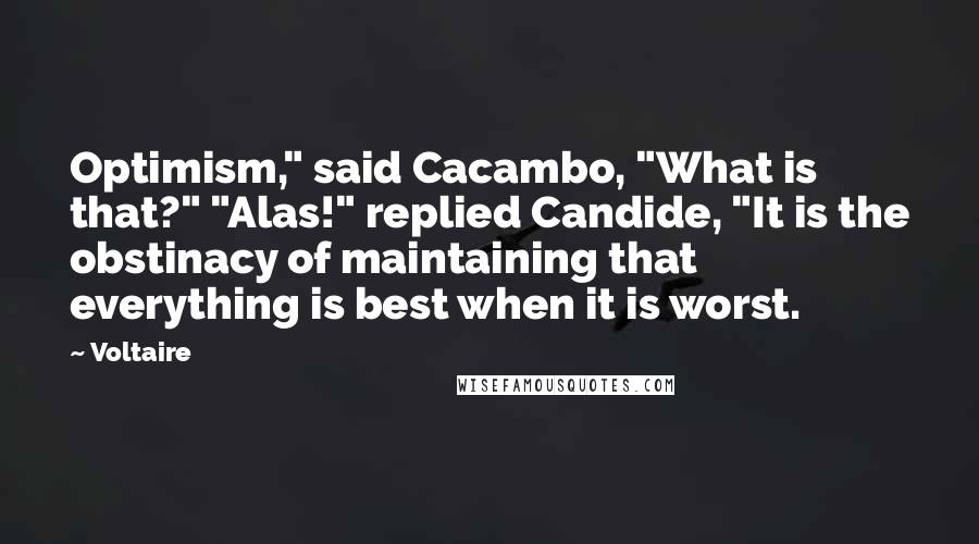 """Voltaire quotes: Optimism,"""" said Cacambo, """"What is that?"""" """"Alas!"""" replied Candide, """"It is the obstinacy of maintaining that everything is best when it is worst."""