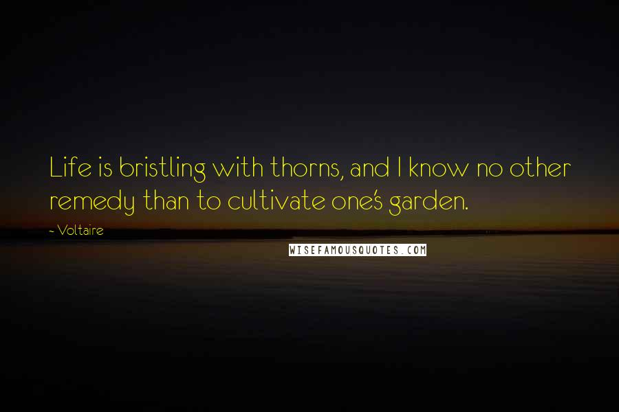 Voltaire quotes: Life is bristling with thorns, and I know no other remedy than to cultivate one's garden.