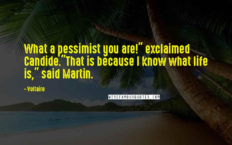 """Voltaire quotes: What a pessimist you are!"""" exclaimed Candide.""""That is because I know what life is,"""" said Martin."""