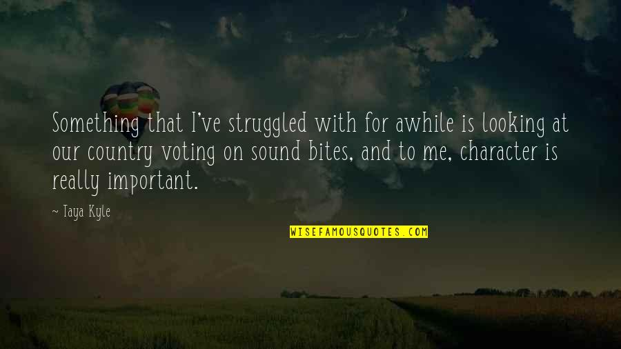 Voting For Me Quotes By Taya Kyle: Something that I've struggled with for awhile is