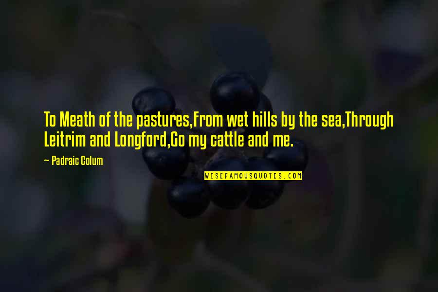 Voyages Quotes By Padraic Colum: To Meath of the pastures,From wet hills by