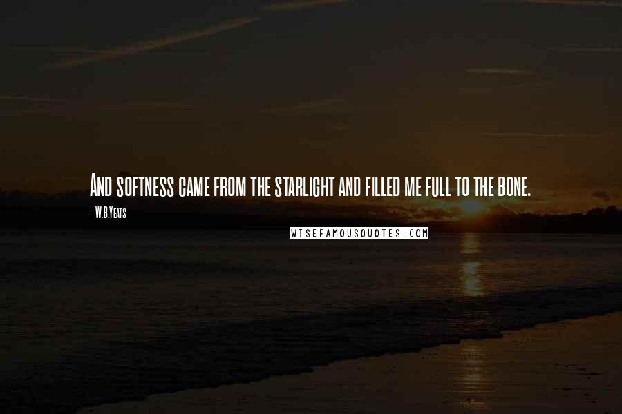W.B.Yeats quotes: And softness came from the starlight and filled me full to the bone.