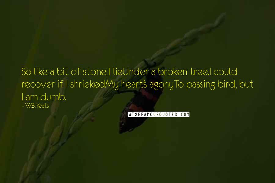 W.B.Yeats quotes: So like a bit of stone I lieUnder a broken tree.I could recover if I shriekedMy heart's agonyTo passing bird, but I am dumb.