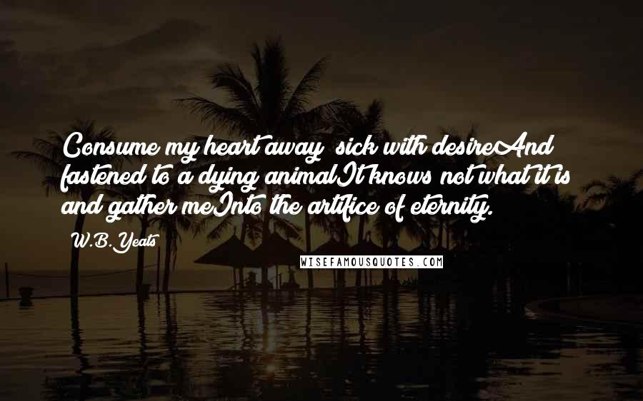 W.B.Yeats quotes: Consume my heart away; sick with desireAnd fastened to a dying animalIt knows not what it is; and gather meInto the artifice of eternity.