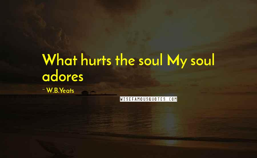W.B.Yeats quotes: What hurts the soul My soul adores