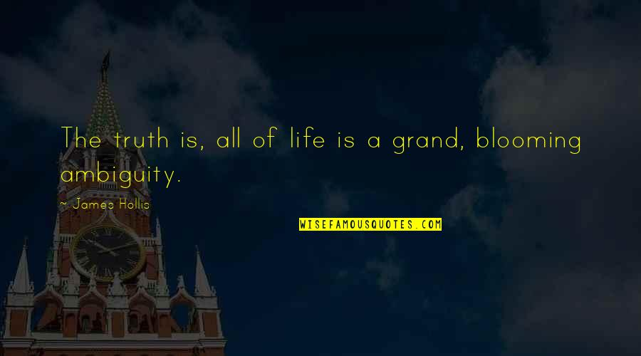 Wacky Families Quotes By James Hollis: The truth is, all of life is a
