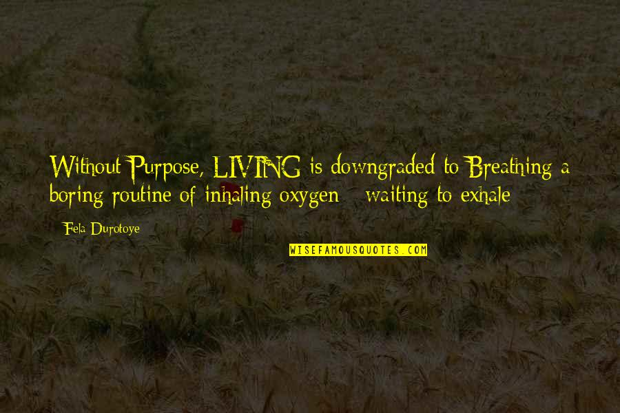 Waiting 2 Exhale Quotes By Fela Durotoye: Without Purpose, LIVING is downgraded to Breathing a