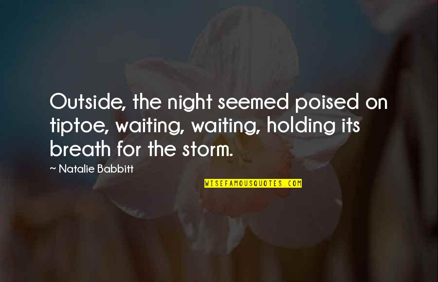 Waiting Out The Storm Quotes By Natalie Babbitt: Outside, the night seemed poised on tiptoe, waiting,
