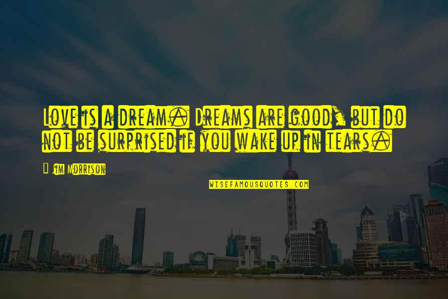 Wake Up From Your Dream Quotes By Jim Morrison: Love is a dream. Dreams are good, but