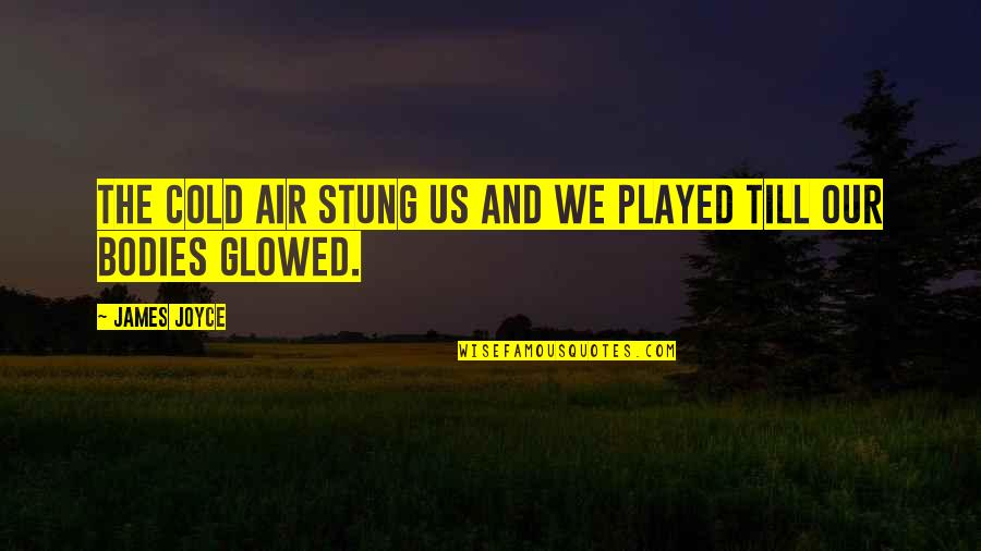 Waking Up Missing You Quotes By James Joyce: The cold air stung us and we played