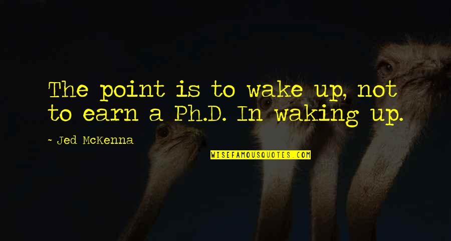 Waking Up To Quotes By Jed McKenna: The point is to wake up, not to