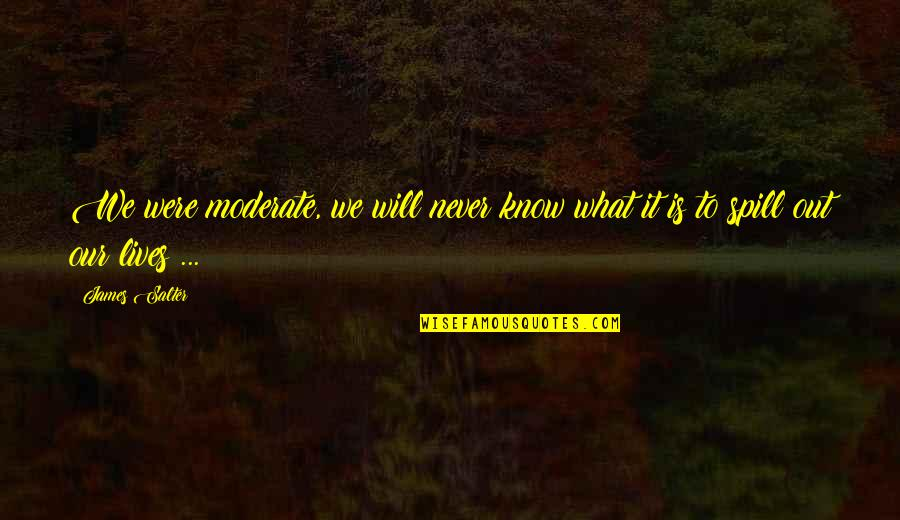 Walang Kwentang Magulang Quotes By James Salter: We were moderate, we will never know what