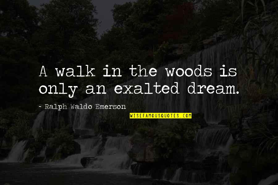 Walk In The Woods Quotes Top 21 Famous Quotes About Walk In The Woods
