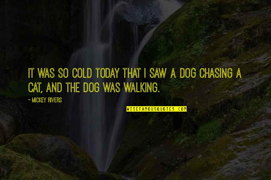 Walking With My Dog Quotes By Mickey Rivers: It was so cold today that I saw