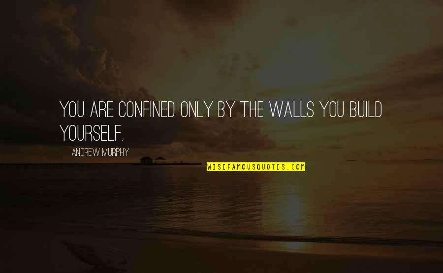 Wall Build Up Quotes By Andrew Murphy: You are confined only by the walls you
