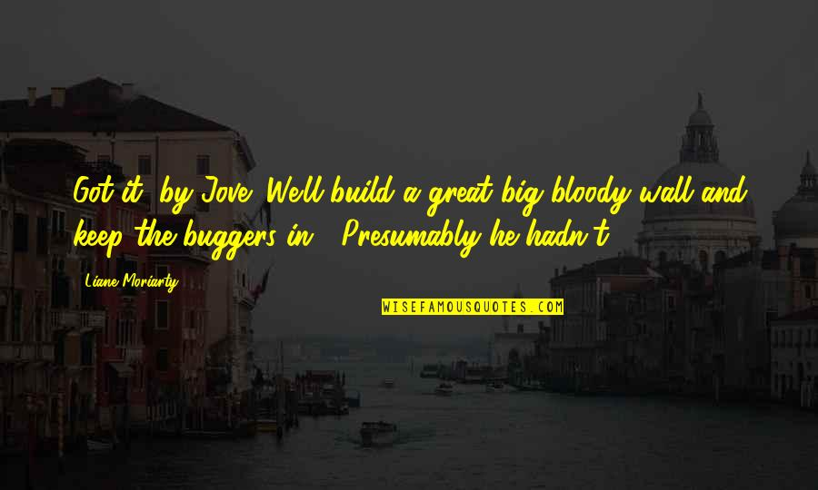 Wall Build Up Quotes By Liane Moriarty: Got it, by Jove! We'll build a great