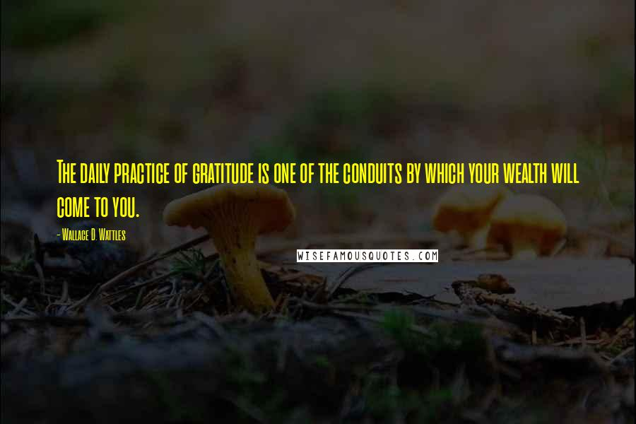 Wallace D. Wattles quotes: The daily practice of gratitude is one of the conduits by which your wealth will come to you.