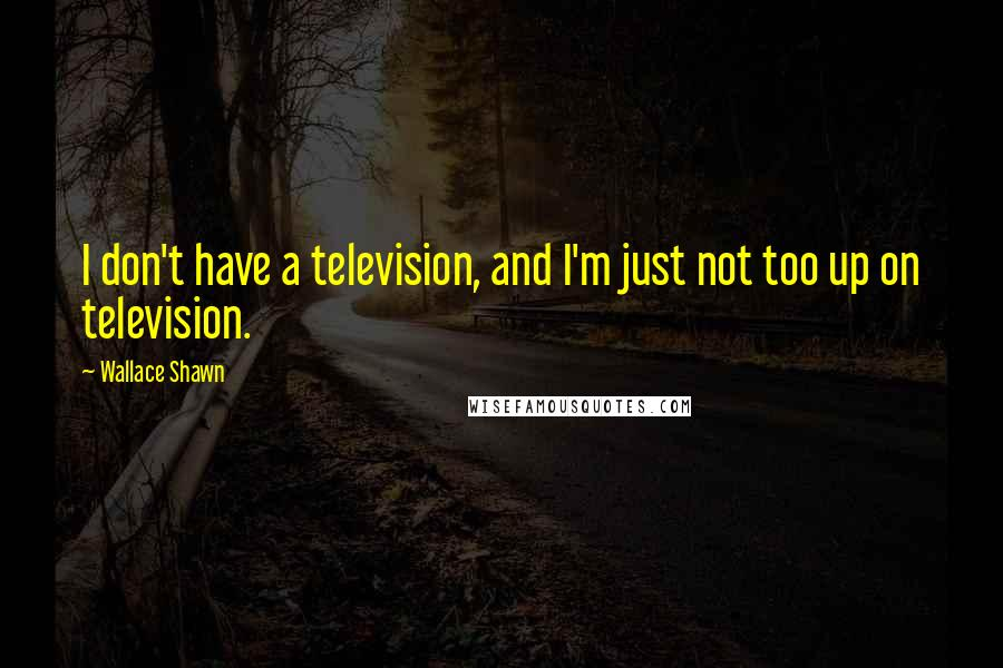 Wallace Shawn quotes: I don't have a television, and I'm just not too up on television.