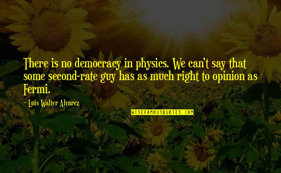 Walter Alvarez Quotes By Luis Walter Alvarez: There is no democracy in physics. We can't