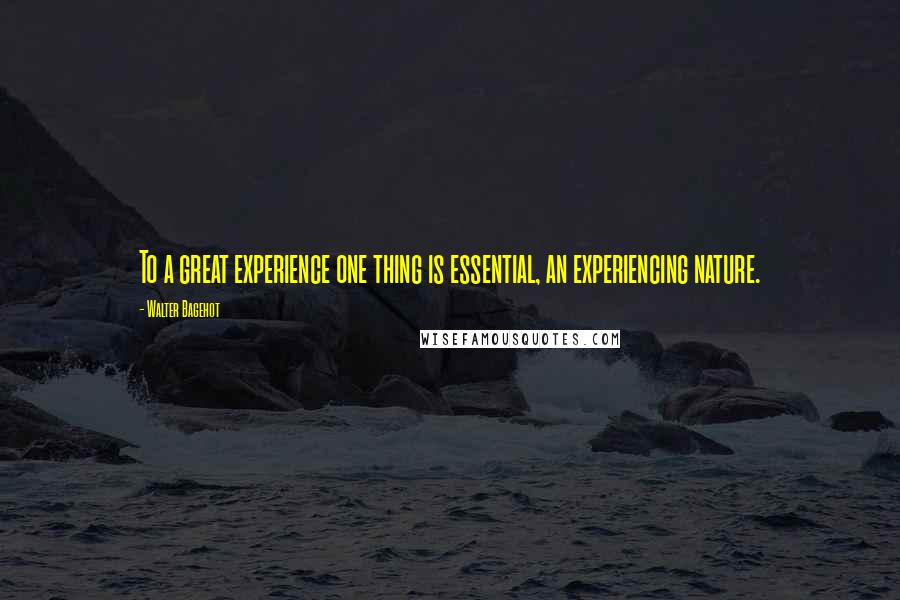 Walter Bagehot quotes: To a great experience one thing is essential, an experiencing nature.
