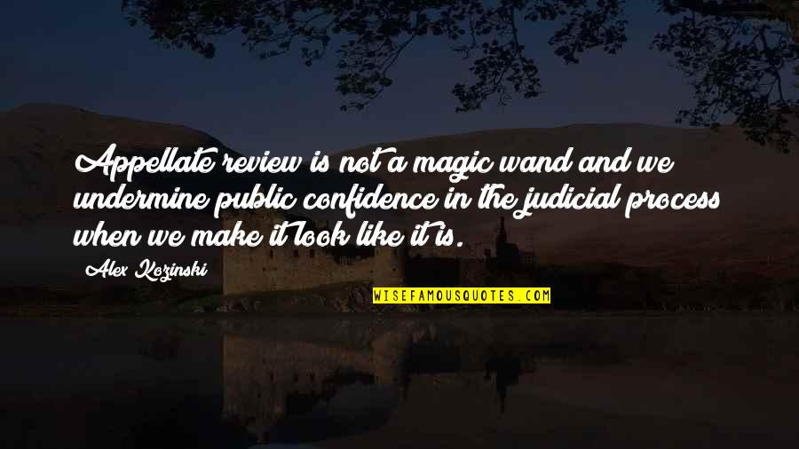 Wand'ring Quotes By Alex Kozinski: Appellate review is not a magic wand and