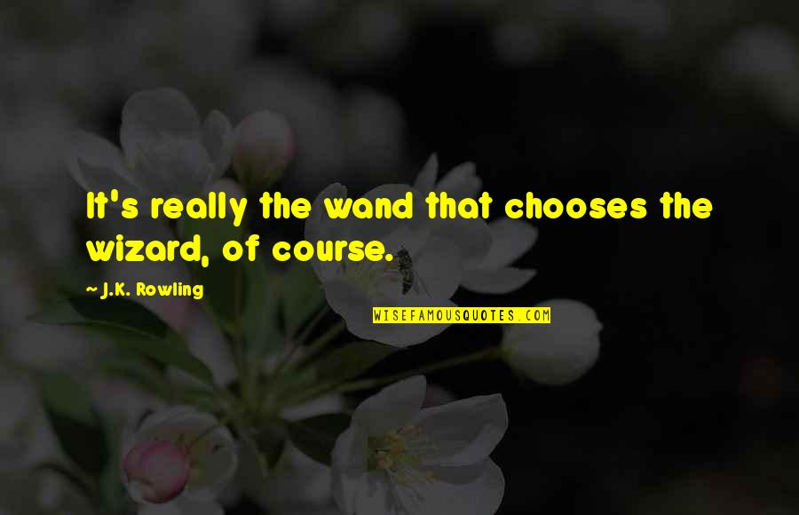 Wand'ring Quotes By J.K. Rowling: It's really the wand that chooses the wizard,