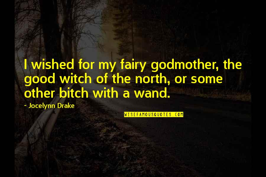 Wand'ring Quotes By Jocelynn Drake: I wished for my fairy godmother, the good