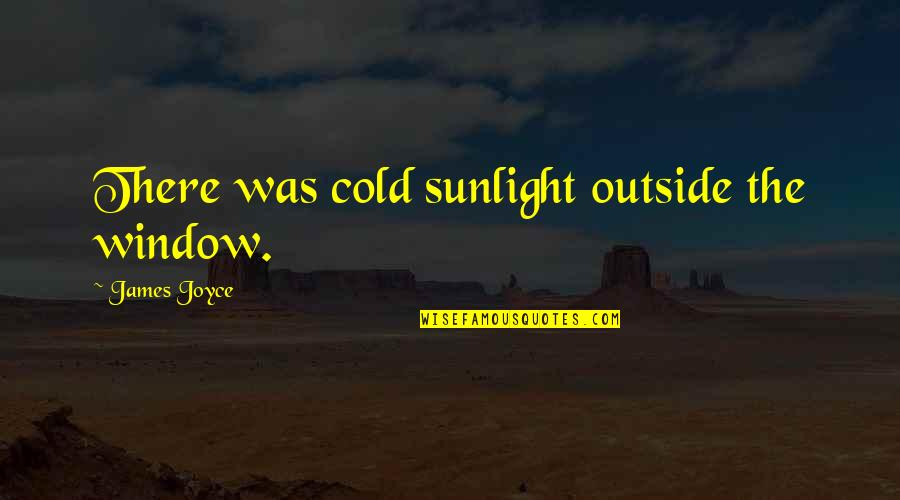 Wanger Quotes By James Joyce: There was cold sunlight outside the window.