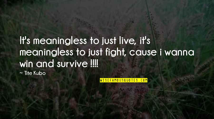 Wanna Fight Quotes By Tite Kubo: It's meaningless to just live, it's meaningless to
