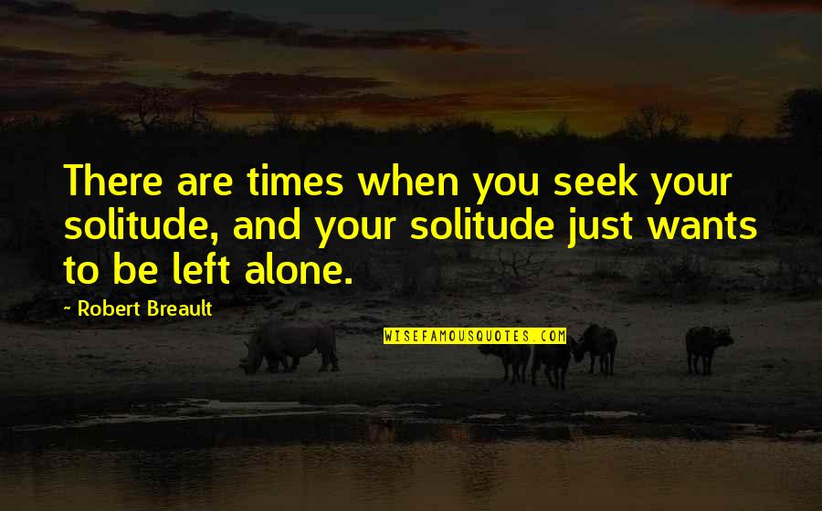 Want To Alone Quotes By Robert Breault: There are times when you seek your solitude,