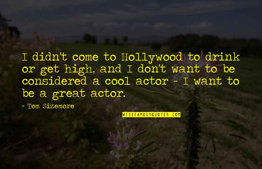 Want To Get High Quotes By Tom Sizemore: I didn't come to Hollywood to drink or