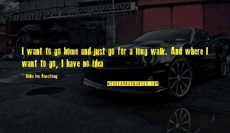 Want To Go Home Quotes By Billie Joe Armstrong: I want to go home and just go